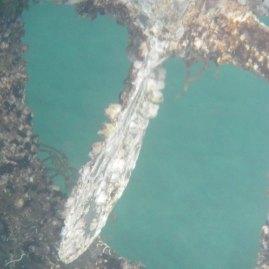 Seepocken an der Schraube