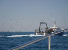 Fischdampfer mit Autopilot