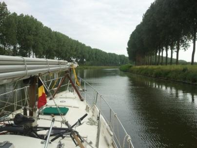Pappelallee in Belgien