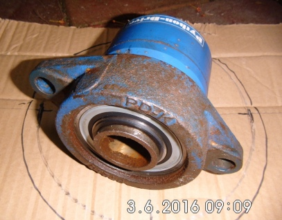DSCI3830