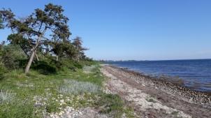 Femö Strand